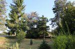 Vente maison Athée 21130 - Photo miniature 6